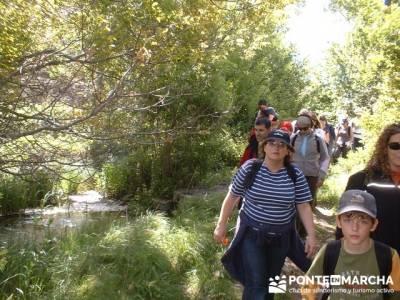 Laguna de SomolinosMonumento Natural de la Sierra de la Pela y Laguna de Somolinos; beneficios del s